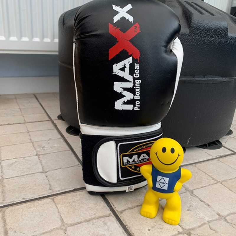 sparky-boxing-3.jpg